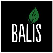 BA_logo_v02